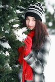 Young beautiful woman behind snow covered pine Stock Images