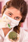 Young beautiful woman biologist experimenting with Stock Images