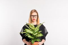 Young beautiful woman with black clothes in studio on white background, holding a plant. Portrait of a young beautiful woman with black clothes in studio on a royalty free stock photos