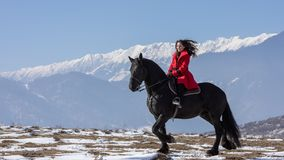 Young beautiful woman on black horse in riding in Transylvania mountains royalty free stock photos