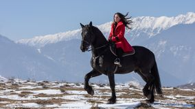 Young beautiful woman on black horse in riding in Transylvania mountains royalty free stock images