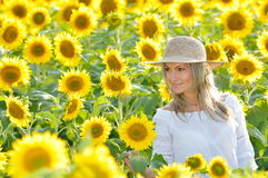 Young beautiful woman on blooming sunflower field Stock Image