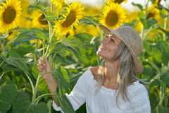 Young beautiful woman on blooming sunflower field Royalty Free Stock Images