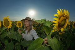 Young beautiful woman on blooming sunflower field Stock Images