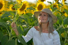 Young beautiful woman on blooming sunflower field in summer Royalty Free Stock Photos