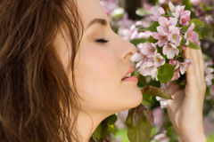 Young beautiful woman in blossom orchard Royalty Free Stock Image