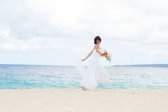 Young beautiful woman bride in wedding dress Royalty Free Stock Image