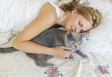 Young beautiful woman with british cat on the bed Stock Photos