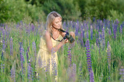 Young beautiful woman with camera in the lupine fi Stock Image