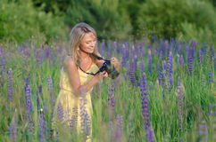 Young beautiful woman with camera in the lupine fi Royalty Free Stock Photos