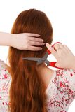 The young beautiful woman cuts red long hair Stock Photography