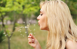 Young beautiful woman with a dandelion Royalty Free Stock Image