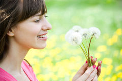 Young beautiful woman with dandelions Stock Photos