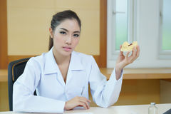 Young beautiful woman dentist holding denture cast model Stock Photography