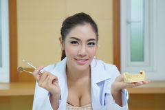 Young beautiful woman dentist holding denture cast model Stock Images