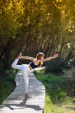 Young beautiful woman doing yoga in nature. Young woman doing yoga in nature. Female wearing sport clothes Stock Image