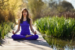 Young beautiful woman doing yoga in nature. Young woman doing yoga in nature. Female wearing sport clothes in lotus figure Royalty Free Stock Images