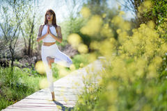 Young beautiful woman doing yoga in nature. Young woman doing yoga in nature. Female wearing sport clothes in tree figure Stock Photos
