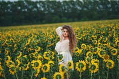 Young beautiful woman in a dress among blooming sunflowers. Agro-culture stock photos