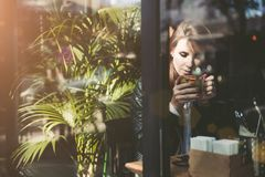 Young beautiful woman drinking tea in cafe royalty free stock photos