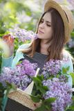 Spring portrait of a beautiful woman outdoors in the park, among the bushes blooming lilac. Young beautiful woman enjoying the smell of blooming lilac on a sunny stock photography
