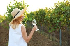 Young beautiful woman enjoying wine at vineyard. Space for text stock photography