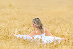 Young beautiful woman on field in summer Stock Images