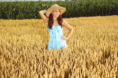 Young beautiful woman in field of wheat Stock Images