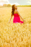 Young beautiful woman in field of wheat Royalty Free Stock Image