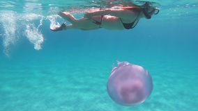 A young beautiful woman filmed in slow motion underwater swims in a transparent blue with a Rhizostoma pulmo, commonly known as. Barrel jellyfish, dustbin-lid stock footage