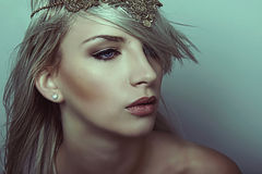 Young beautiful woman with flawless skin and perfect make-up and brown hair Royalty Free Stock Images