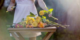 Young beautiful woman florist. The girl in the Stock Photo