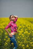 Young beautiful woman in flowering field in summer. Outdoors Royalty Free Stock Images