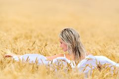 Young beautiful woman in golden wheat field Royalty Free Stock Images