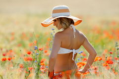 Young beautiful woman on golden wheat field in summer Stock Image