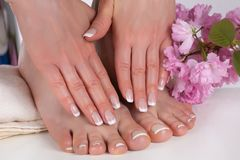 Girl hands and bare feet with french manicure and pedicure nails polish on white towel in beauty salon and decorative pink flower. Young beautiful woman hands royalty free stock images
