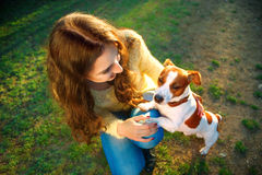 Young beautiful woman holds a hand over the pet dog`s paw on a background of spring park stock photo