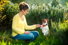 Young beautiful woman holds a hand over the pet dog`s paw on a background of spring trees stock image