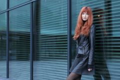 Beautiful woman in leather jacket and skirt. Young beautiful woman in leather jacket and skirt Stock Photography