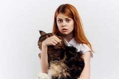 Young beautiful woman on a light background holds a cat, pets, emotions Stock Photos