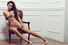 Young beautiful woman in lingerie: lace white dark blue bra, pan Stock Photos