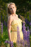 Young beautiful woman in the lupine field Royalty Free Stock Images