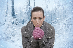 Snow. Young beautiful woman in nature when it snows Royalty Free Stock Images