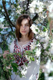 Young beautiful  woman  near the apple tree Royalty Free Stock Photo