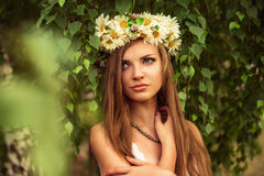 Young beautiful woman outdoor in a birchwood wearing wreth of daisy Stock Photos