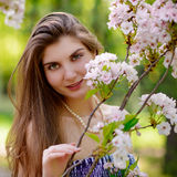 Young Beautiful Woman with Pink Sakura Flowers Stock Images