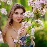 Young Beautiful Woman with Pink Sakura Flowers Stock Photos