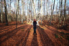 Young beautiful woman plays with beech leaves in one of the most amazing beech forest in Europe, La Fageda d'en Jorda & Royalty Free Stock Photos