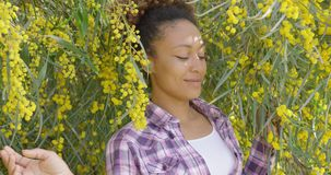 Young beautiful woman posing in trees stock video footage