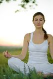 Young Beautiful Woman Practices Yoga on the Meadow Royalty Free Stock Image